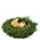 Nid d'herbe, D12cm, vert